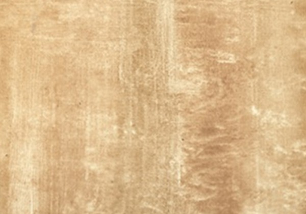 POLISHED TRAVERTINE TILES WITH HONEY COLOR
